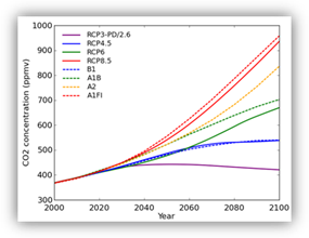 Graph showing the atmospheric carbon dioxide concentrations under each of the hypothetical SRES and RCP emissions scenarios.